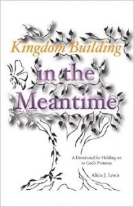 New book Kingdom Building In The Meantime