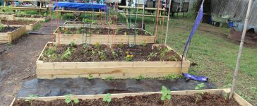 New urban farming project in Brookland